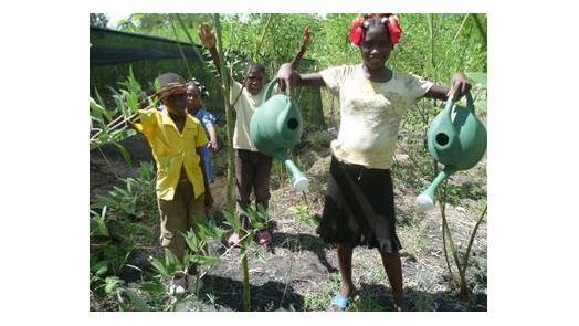 haiti présentation